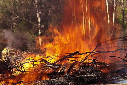 This is an image of a bushfire