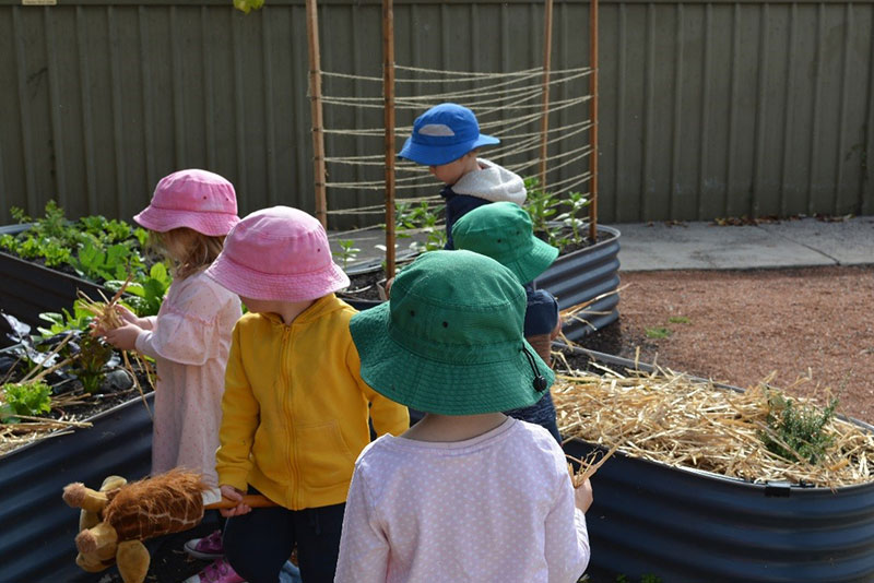 Children-checking-for-vegetables.jpg