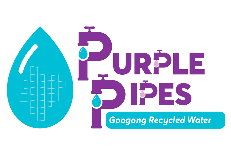 Purple Pipes branding